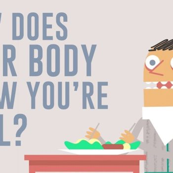 How does your BODY know your are full?